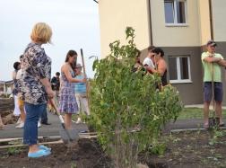 Гости могли участвовать в высадке деревьев